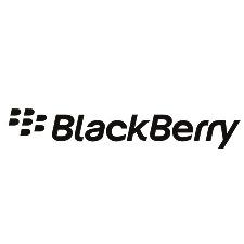 blackberry01.jpg#asset:481:url